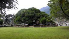 福州国家森林公园-福州-_m13****0862