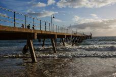 格雷尔海滩-阿德莱德-doris圈圈