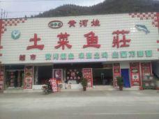 黄河娃土菜鱼庄-吉县