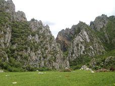 白龙江大峡谷-若尔盖-走走-74511940