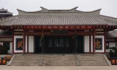 诸葛亮文化旅游区-沂南-孟氏老树