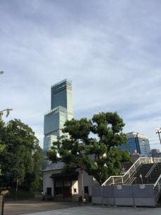 阿倍野HARUKAS摩天大楼-大阪-玉之晶莹