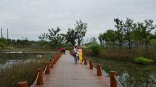 月亮湾公园-襄阳-118****781