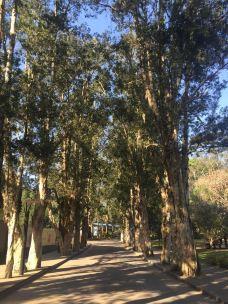 福州国家森林公园-福州-ly****w