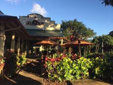哈雷伊瓦小镇-夏威夷-celine
