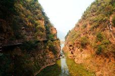 黄河丹峡旅游风景区-渑池-139****2776