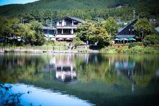 日本由布院-金鳞湖-九州-koori