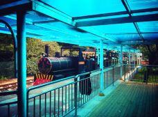 新南戴河国际娱乐中心-南戴河-_CFT01****3348325