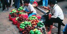 丹绒槟榔-民丹岛