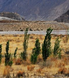 曲水游记图文-单车自驾:穿行山南,感受西藏的灵魂所在
