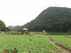 石灶风景区-从化区-广州丁满