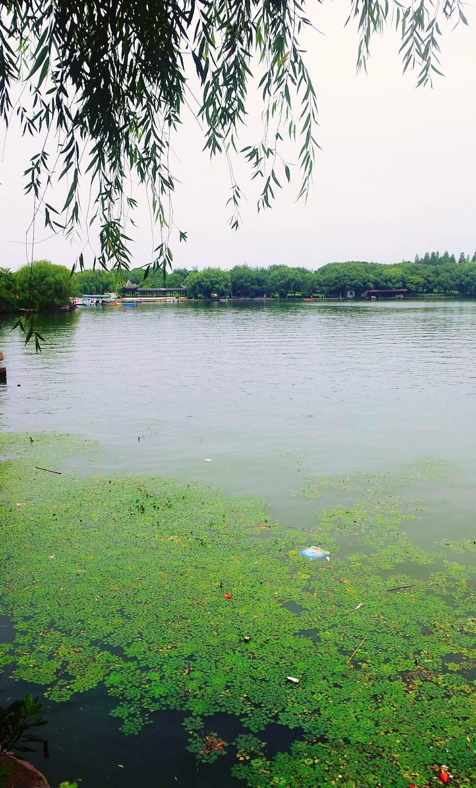 東錢湖又稱錢湖,萬金湖,是浙江省著名的風景名勝區,距寧波城東15公