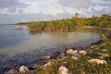 比斯坎国家公园-迈阿密-doris圈圈