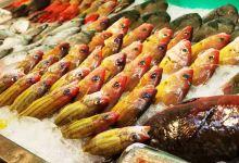 高雄美食图片-海鲜
