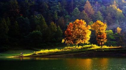 印象枫湖(王庆刚)