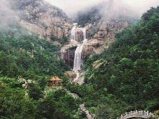晋华宫国家矿山公园-大同-颗颗的树