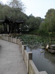 南山-镇江-chenli476