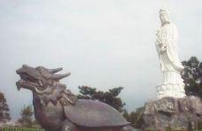 杨梅贵山公园-桃园市-白袍小将