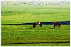 蓝天牧场风景区-怀柔区-大叔任然