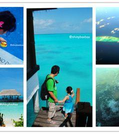 神仙珊瑚岛游记图文-牵着小手去旅行之马尔代夫神仙珊瑚岛家庭亲子之旅