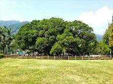 福州国家森林公园-福州-nj****gie