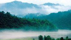 三爪仑国家森林公园