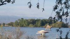 阿苇滩湖旅游区-阿勒泰-m82****25