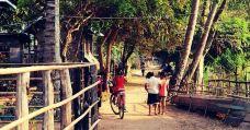 东孔岛-老挝-m82****25