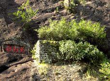 武夷山-1494534