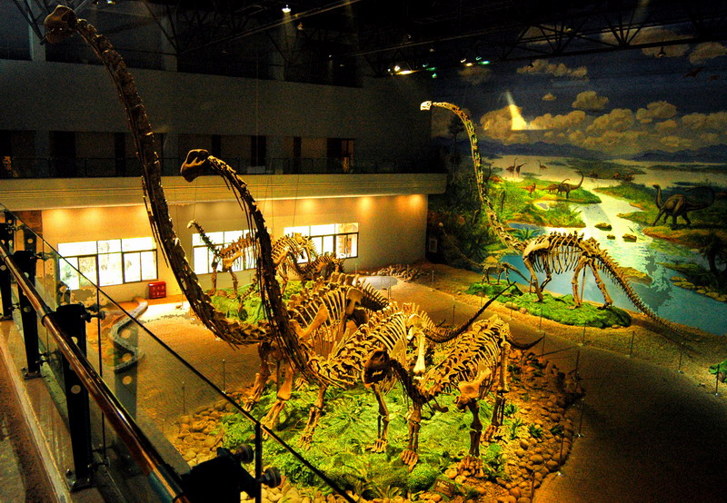 Zigong Dinosaur Museum Admission Ticket